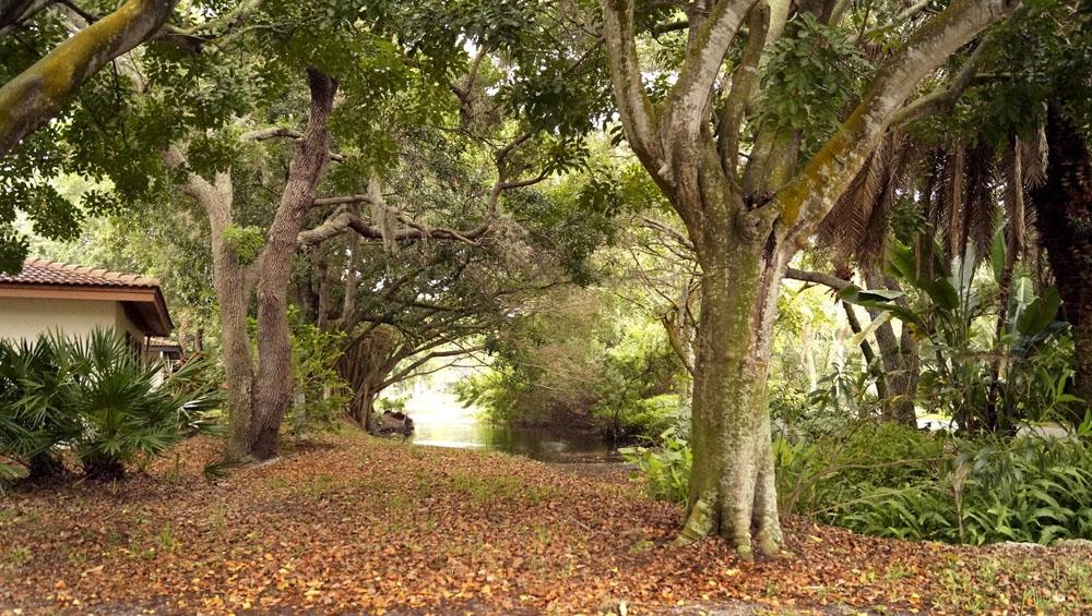 Wild Oak Bay grounds